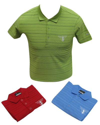 Nike Dri-FIT Tech Core Stripe Junior Golf Polo